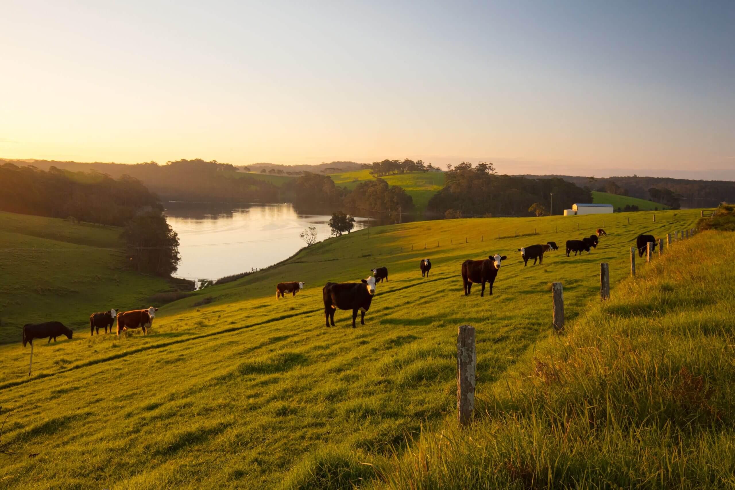 Rural Property Loans